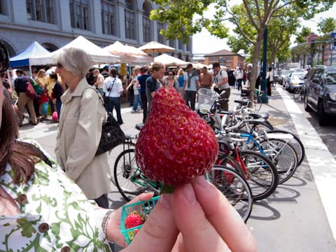 Fresh, red, ripe, strawberries from the Farmer's Market