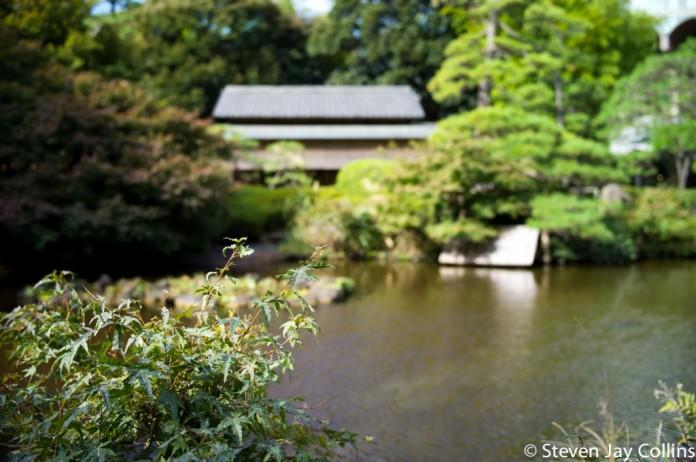 tokyo-november-2011-537-Edit1-1024x681