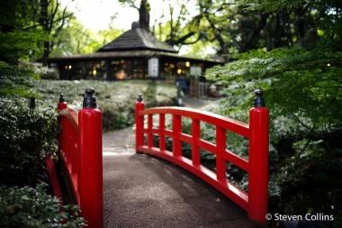 tokyo-november-2011-550