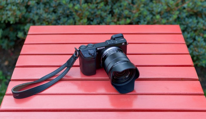 The Sony NEX 7 - This thing is a workhorse and a great bargain on the used market.