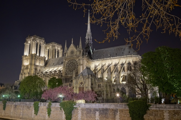 Colorful Notre Dame at night.