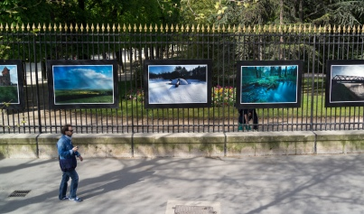 I love this about the Jardin du Luxembourg, big, beautiful prints down one entire side of the park.