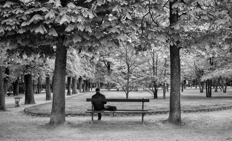 Jardin du Luxembourg - Sony RX1r.  Yellow filter applied in Silver Efex Pro 2.