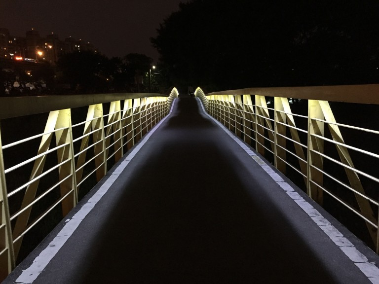 A beautifully designed bike bridge along the river. (iPhone 6, VSCOcam, G1 preset)
