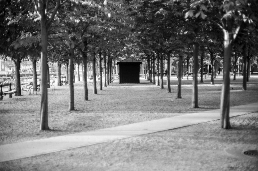 Kiosk in the Park (Leica M9 with Canon 50mm f/1.4 LTM)