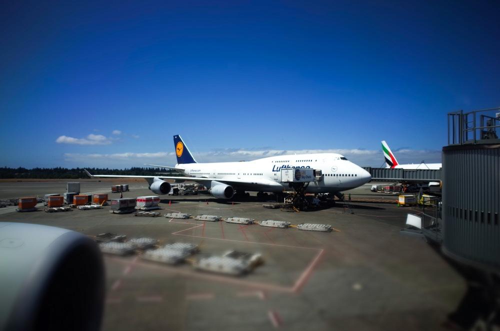 A Lufthansa 747-400 at the gate at Seatac.