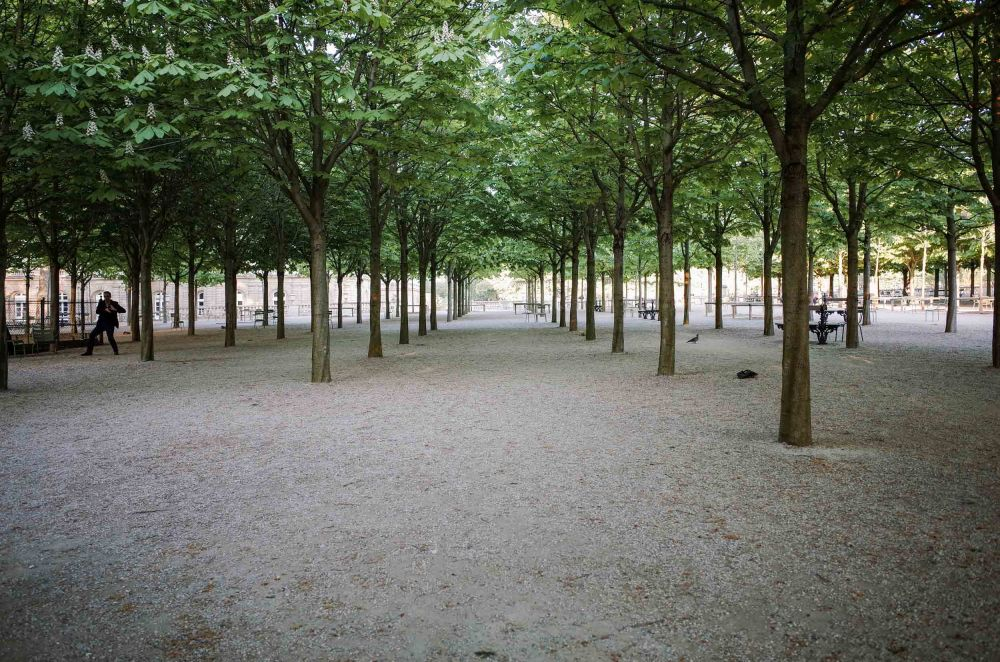 All of the walking paths are covered with an  unmistakeable tan gravel.