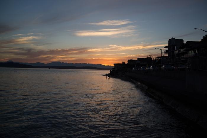 Beach Drive SW, Alki (Sony RX1r)