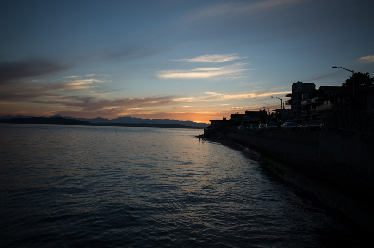 Beach Drive SW, Alki (Ricoh GR)