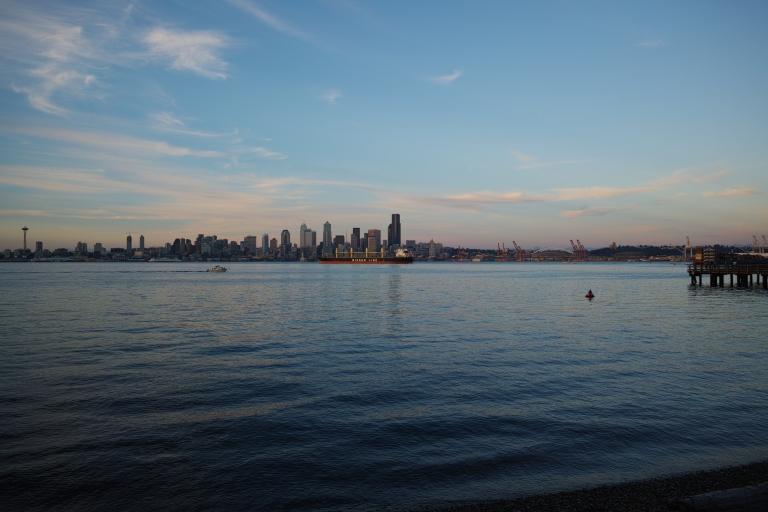 Seacrest Park, West Seattle. (Sigma DP1 Quattro)